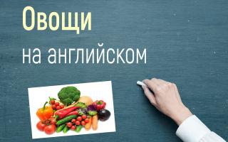 Все овощи на английском с переводом