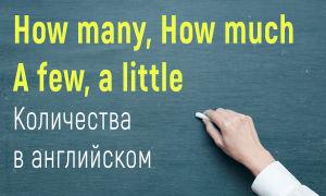 Количества в английском языке (Many, much, how many, how much, a few, a little, a lot of)