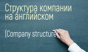 Структура компании, отделы и должности на английском