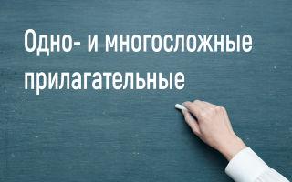 Односложные, многосложные и составные прилагательные в английском языке